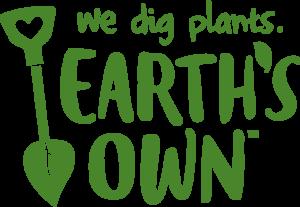 Earth's Own: Cashew/ Oat/ Almond